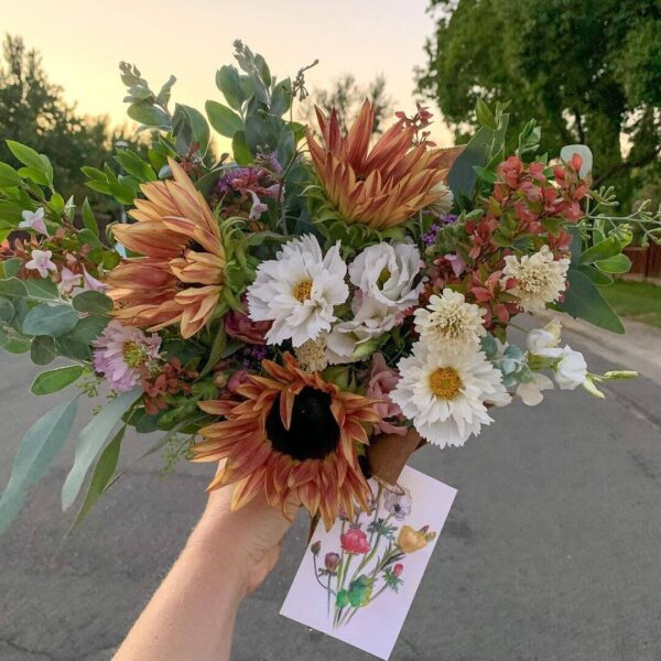 Arranged bouquet of local flowers from Bloom Sacramento being photographed at sunset.